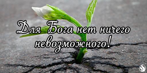 Для Бога нет ничего невозможного!